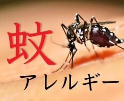 mosquito_bite